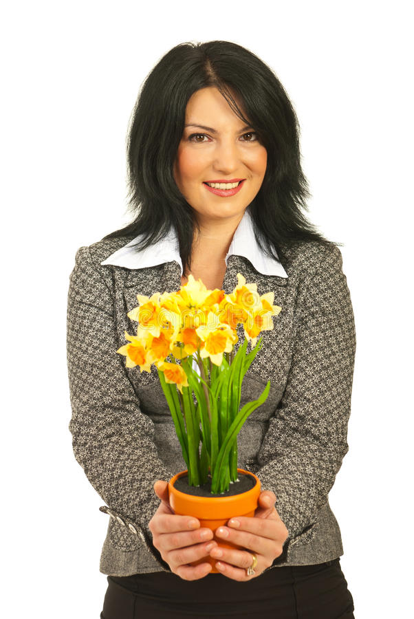 Potenciômetro de oferecimento da mulher de negócio dos daffodils fotos de stock