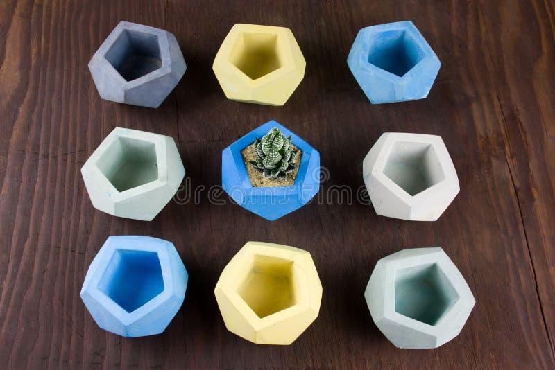 Potenciômetros concretos suculentos e vazios para plantas em um fundo de madeira, no exemplo do projeto e nos produtos para o int imagens de stock royalty free