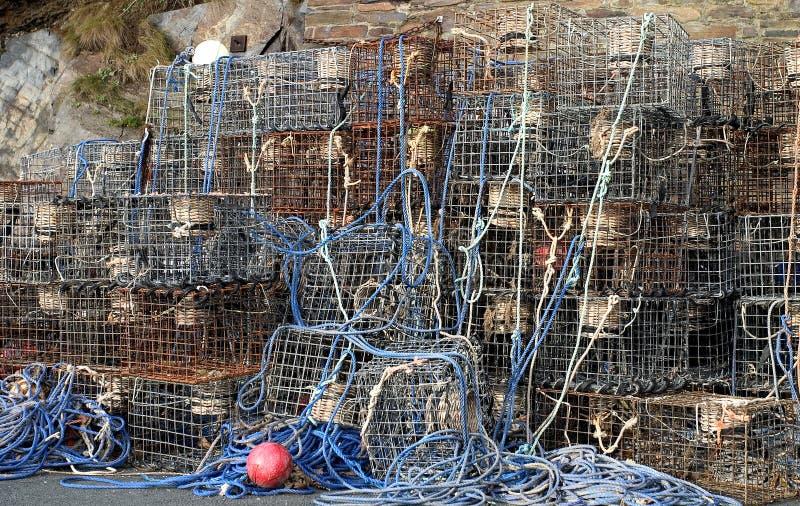 Potenciômetros de lagosta fotos de stock
