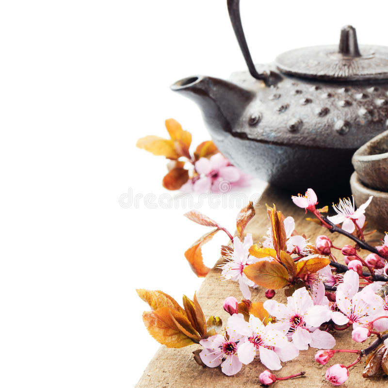 Potenciômetro asiático do chá com flor de cerejeira imagem de stock royalty free
