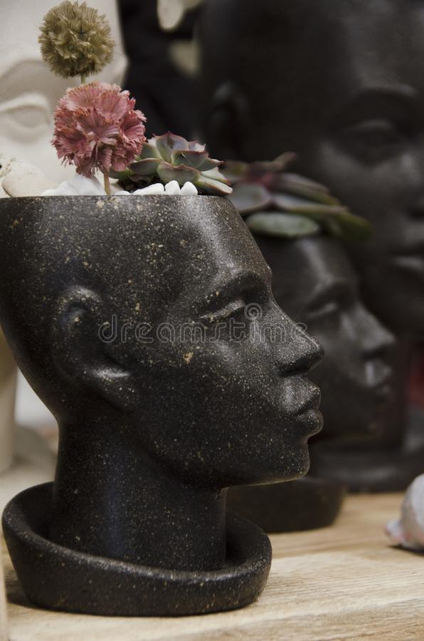 Potenci?metro de flor decorativo em uma prateleira de madeira fotos de stock royalty free