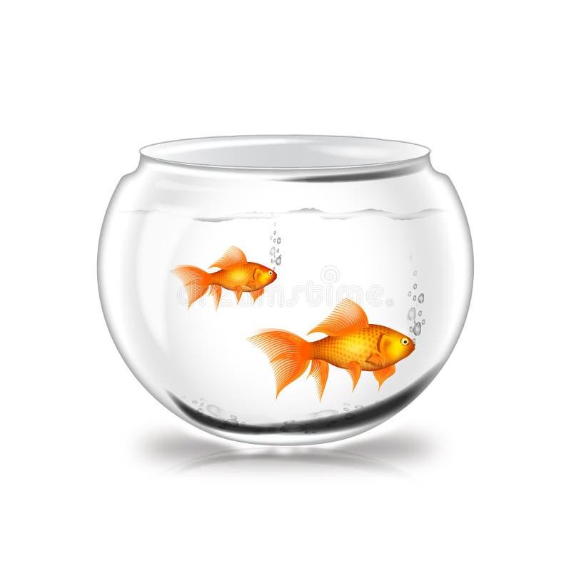 Potenciômetro de peixes ilustração do vetor