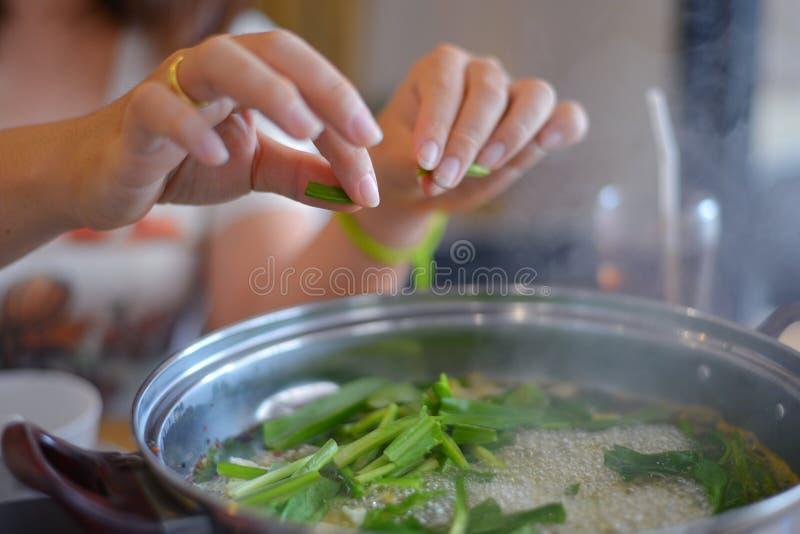 Potenciômetro quente da sopa fotografia de stock royalty free