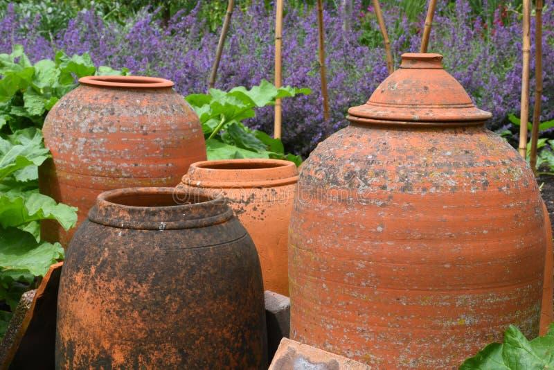 Potenciômetros da terracota, jardim de Tintinhull, Somerset, Inglaterra, Reino Unido imagem de stock