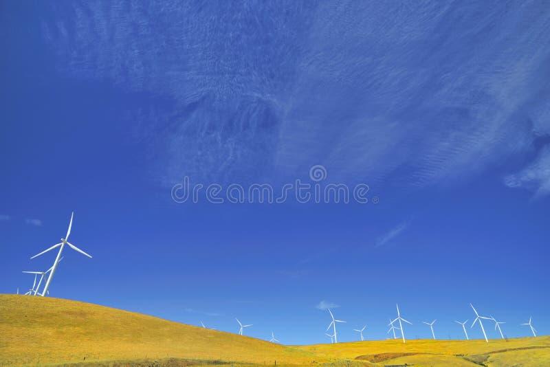 Potenza di Eco fotografia stock