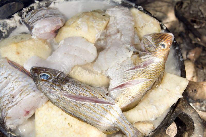 Potenziometer rondown Nahrung im Freien kochendes Nicaragua lizenzfreie stockbilder