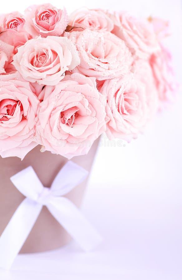 Potenziometer rosafarbene nasse Rosen stockfotos