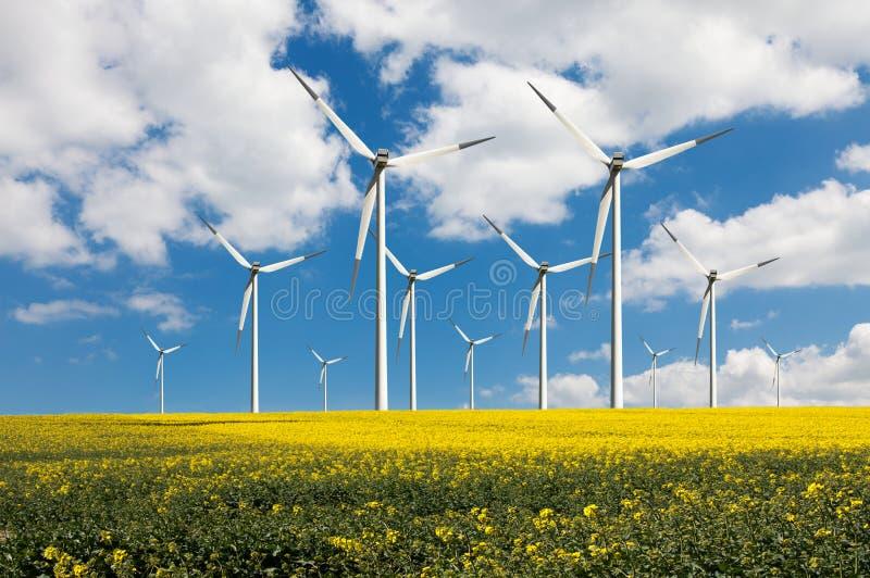 Potere di Eco immagini stock