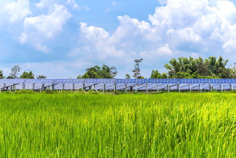 Potere ecologico del pannello solare fotografia stock libera da diritti