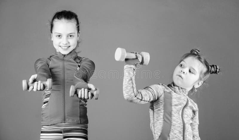 Potere ed energia Piccolo bambini che sviluppano idoneit? fisica Sorelle sveglie che fanno gli esercizi di forma fisica della pal fotografia stock libera da diritti