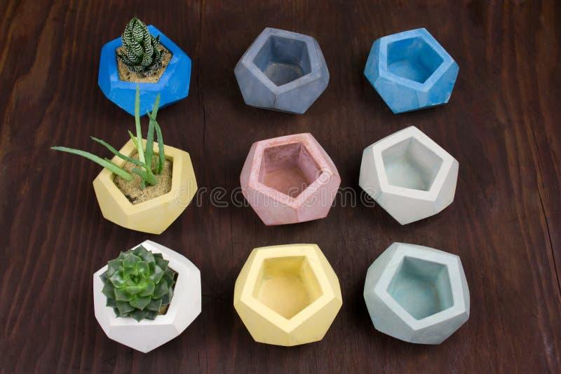 Potes concretos suculentos y vacíos para las plantas en un fondo de madera, el ejemplo del diseño y los productos para el interio imagen de archivo libre de regalías
