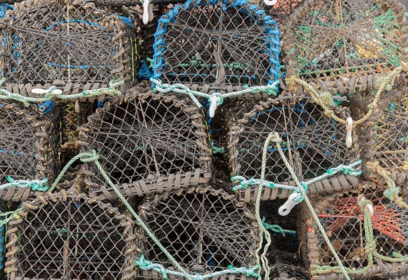 Potes de la langosta o de cangrejo imagenes de archivo