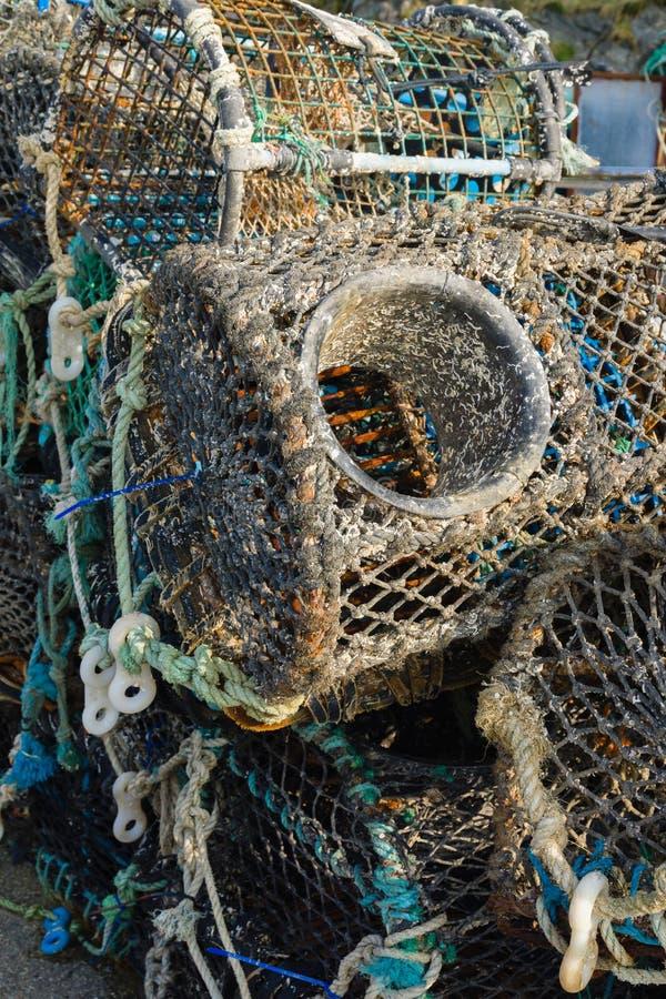 Potes de la langosta y de cangrejo foto de archivo