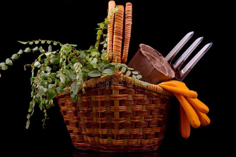 Potes de la turba para los almácigos, los rastrillos, los guantes anaranjados, la planta y la cesta imágenes de archivo libres de regalías