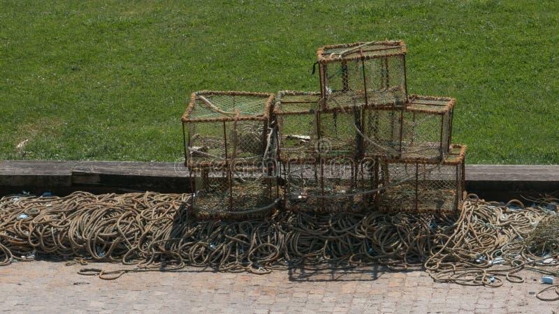 Potes del cangrejo o de langosta que se secan en el sol en el muelle en Portugal durante verano fotos de archivo