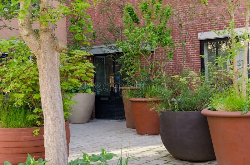 Potes marrones y negros enormes para las plantas y ?rboles fuera de la entrada detr?s a los apartamentos Dise?o del estilo de la  fotografía de archivo