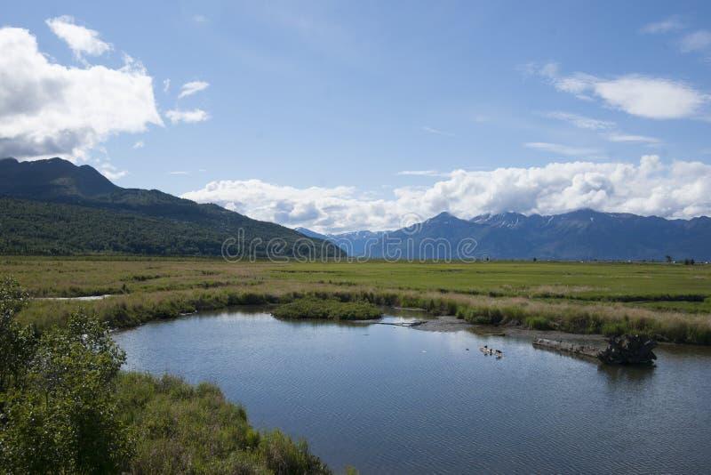 Potier Marsh Wildlife Refuge Anchorage Alaska photo stock