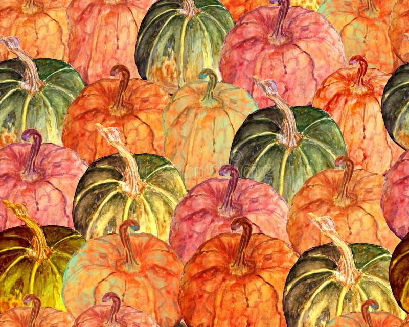 Potiron coloré d'aquarelle illustration libre de droits