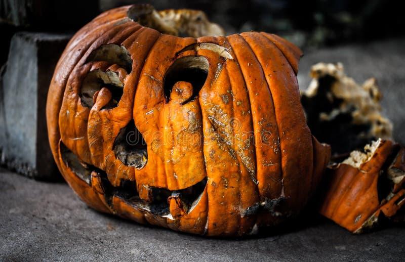 Potiron découpé de décomposition rampant/concept de Halloween image libre de droits