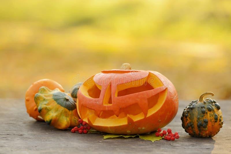 Download Potiron De Halloween Sur Les Planches En Bois Photo stock - Image du rire, lame: 45361442