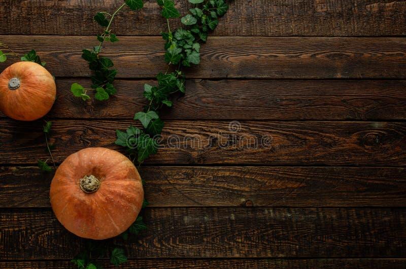Potiron et lierre sur la table en bois foncée Vue supérieure image stock