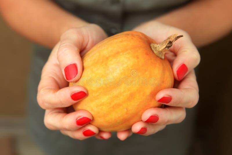 Potiron jaune dans des mains images stock