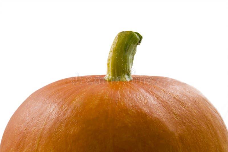 Potiron orange photos libres de droits