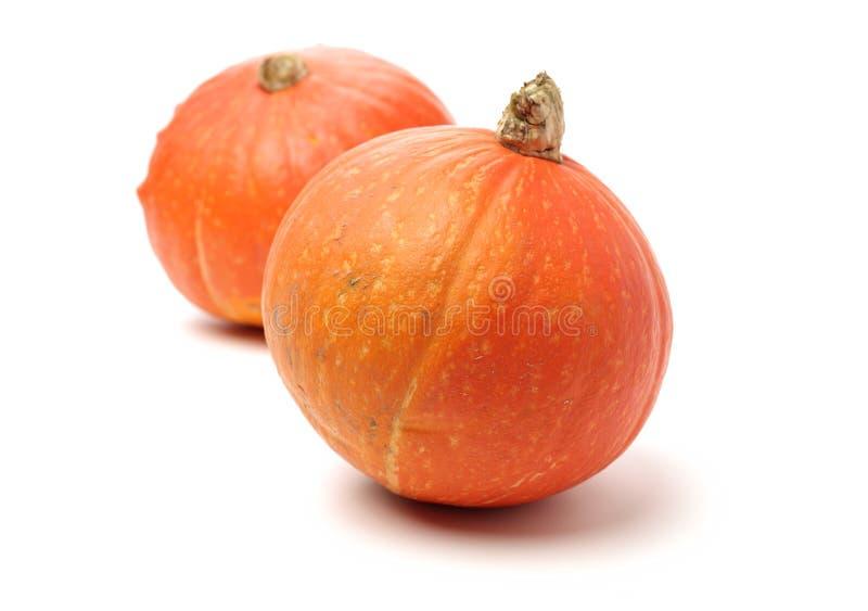 Potiron orange images libres de droits