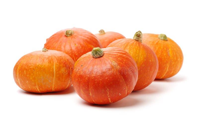 Potiron orange photo libre de droits