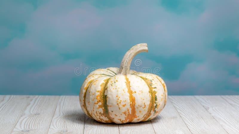 Potiron rayé blanc et orange pour des festivités de chute image stock