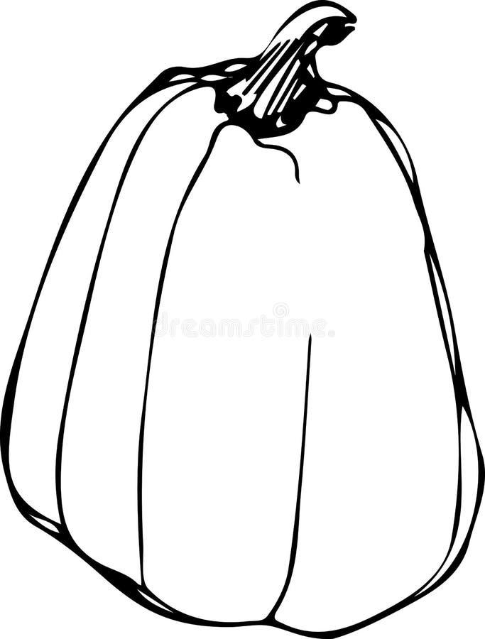 Download Potiron Sur Le Backgroundp Blanc Illustration de Vecteur - Illustration du courge, retrait: 45370732
