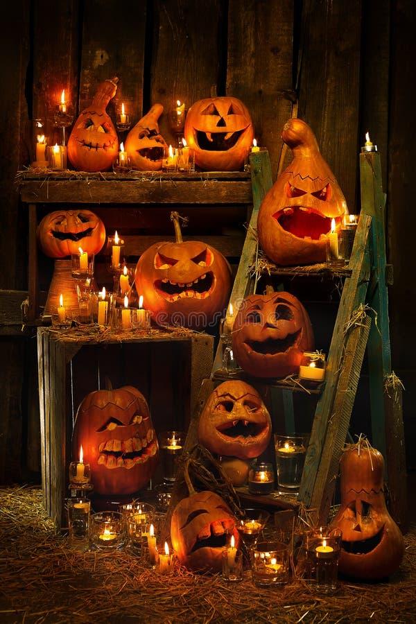 Potirons De Halloween Photos libres de droits