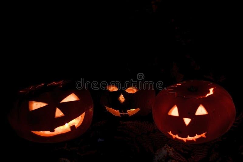Potirons effrayants de Halloween d'isolement sur un fond noir Des bonbons ou un sort rougeoyant effrayant de visages photos libres de droits
