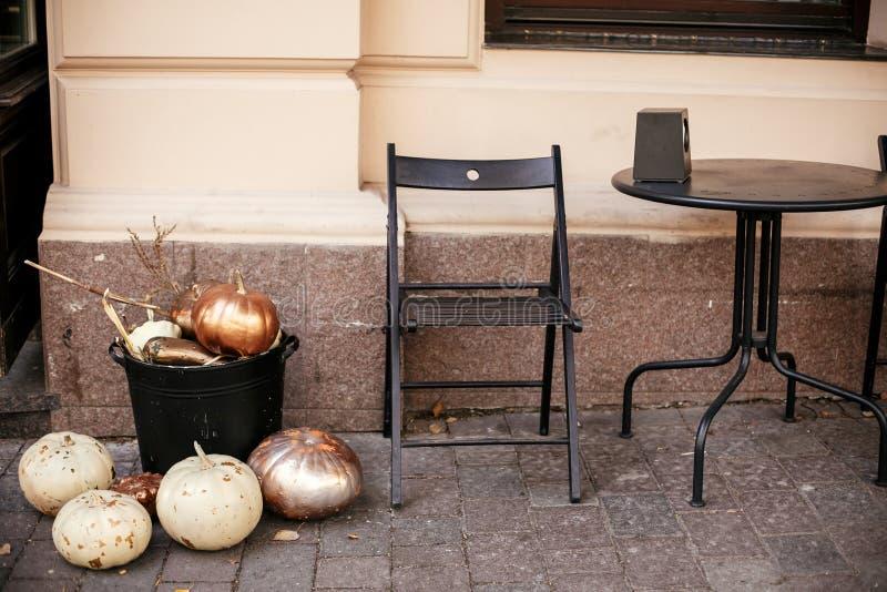 Potirons et courge d'or élégants dans la rue de ville, les avants de magasin de décorations de vacances et les bâtiments Décor de photo libre de droits