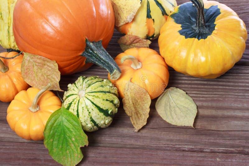 Potirons et sirops et feuilles d'automne photographie stock