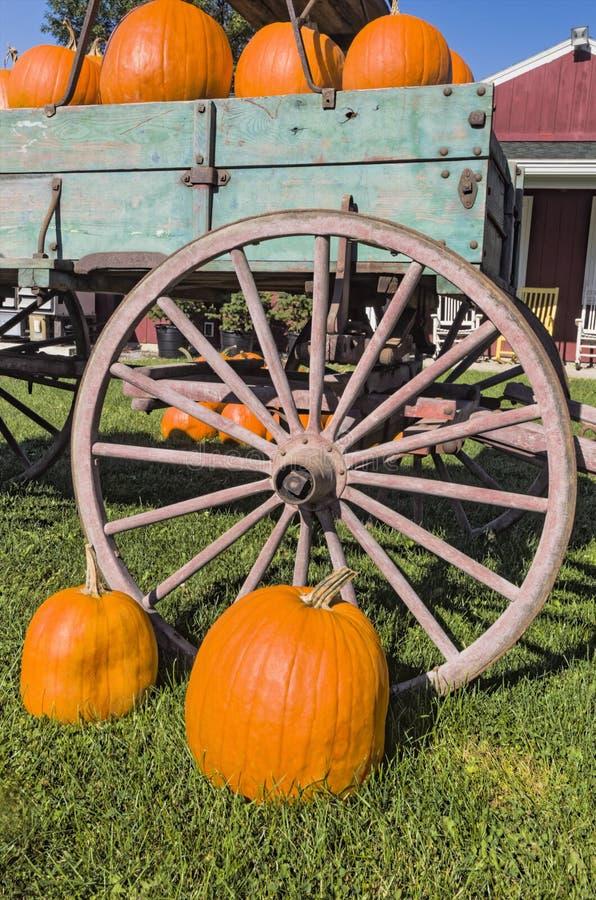Potirons et vieux chariot photo libre de droits