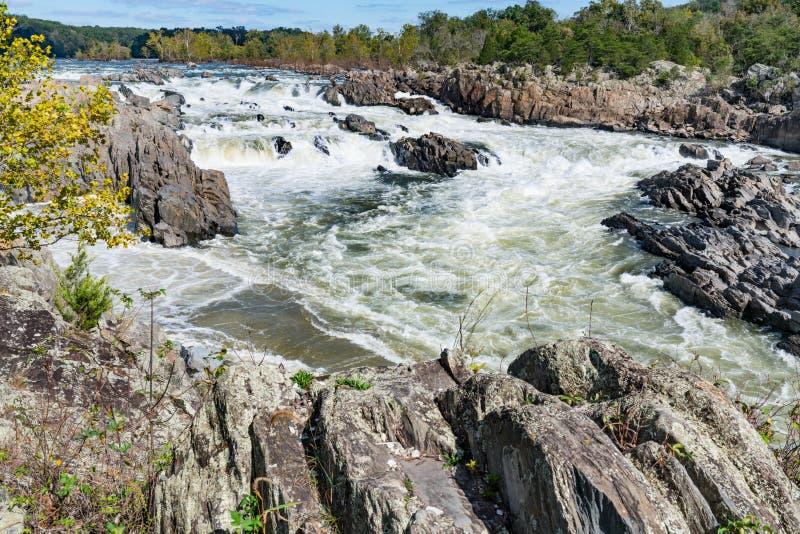 Potomac Rivier langs Great Falls, Virginia royalty-vrije stock foto
