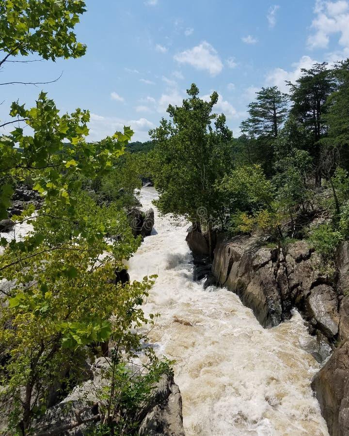 Potomacet River på Great Falls, Maryland arkivfoto