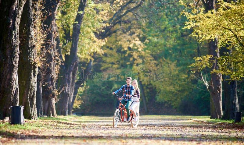 Potomstwa dobieraj? si?, przystojny m??czyzna i atrakcyjna kobieta na tandemowym rowerze w pogodnym lato parku, lesie lub fotografia stock