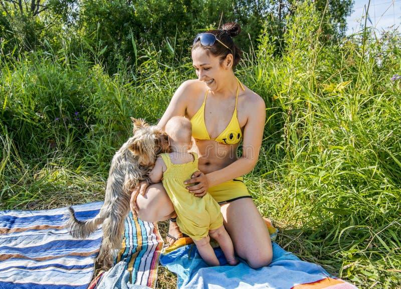 Potomstwa matkują z dzieci bawią się z Yorkshire Terrier przy naturą zdjęcia royalty free