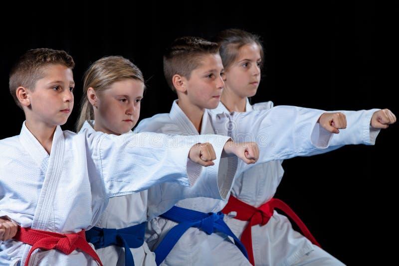 Potomstwa, piękni, pomyślni wielo- etyczni karate dzieciaki w karate pozyci, zdjęcie royalty free