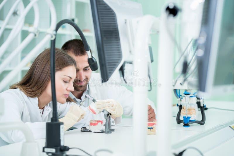 Potomstwo drużyna stomatologiczni technicy robi zębu prostetics Proces zdjęcia royalty free