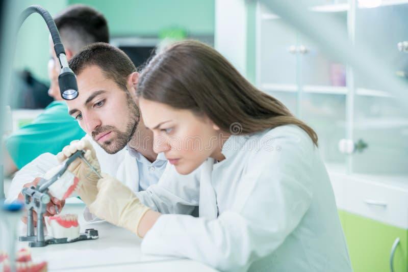 Potomstwo drużyna stomatologiczni technicy robi zębu prostetics Proces obraz royalty free