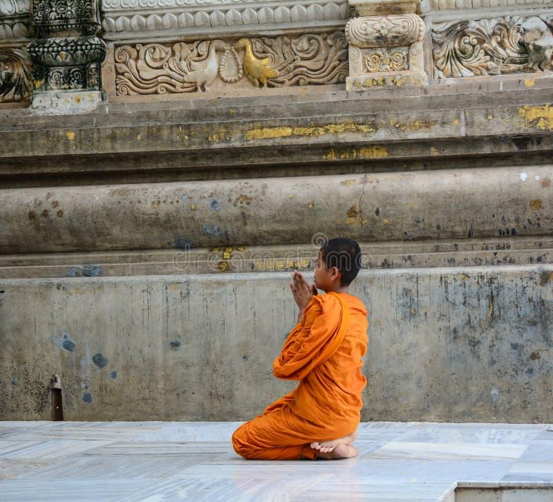 Potomstwo michaelita modlenie przy Buddyjską świątynią w Delhi, India fotografia stock