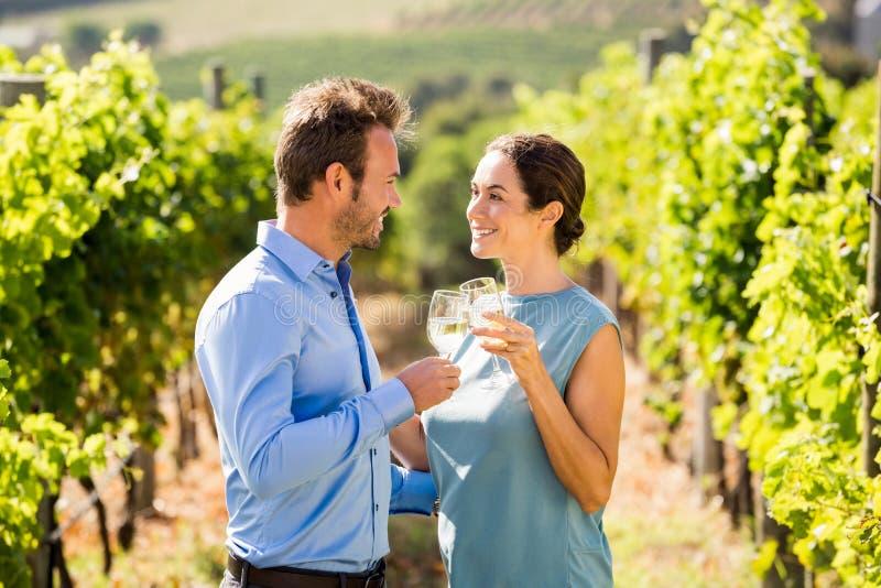 Potomstwo para wznosi toast wineglasses przy winnicą zdjęcia royalty free