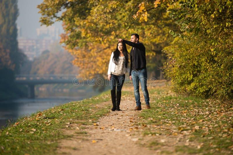 Potomstwo pary odprowadzenie W jesień lesie obraz royalty free