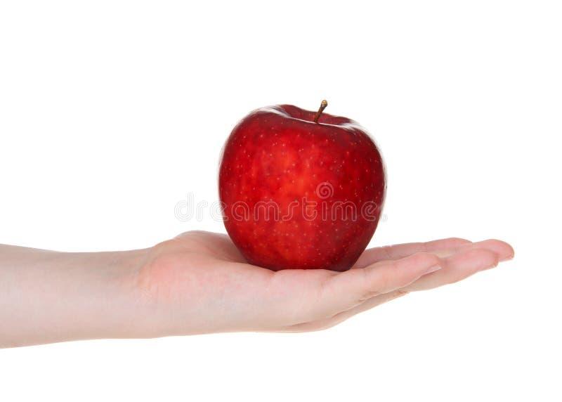 Potomstwo ręka trzyma wyśmienicie czerwonego jabłka odizolowywający na białym tle zdjęcia royalty free