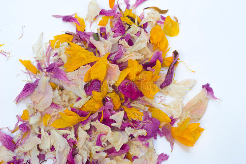 Potpurri secco multicolore dei petali del fiore immagini stock libere da diritti