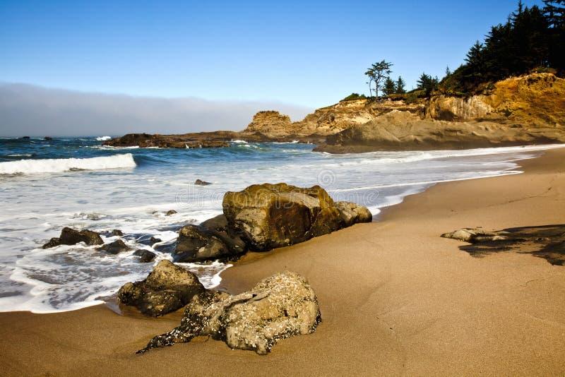 Potrait del litorale dell'Oregon immagini stock libere da diritti