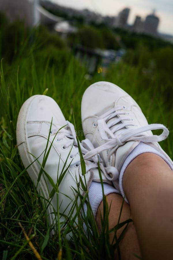 Potrait des chaussures blanches dans l'herbe photos stock